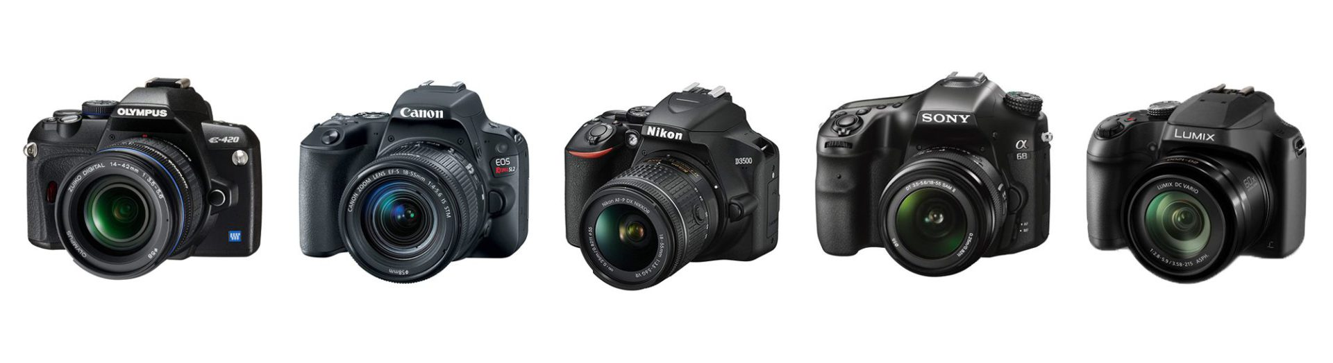 DSLR cameras from the five main brands - Olympus, Canon, Nikon, Sony, and Panasonic.